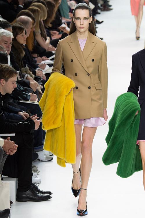 Christian-Dior-RTW-AW14-LOOK-17.jpg