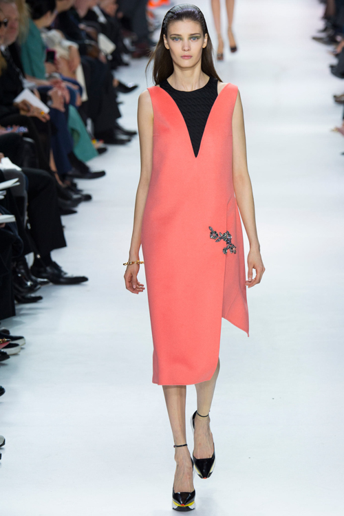 Christian-Dior-RTW-AW14-LOOK-18.jpg