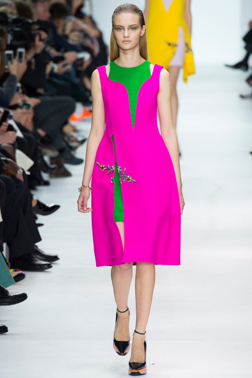 Christian-Dior-RTW-AW14-LOOK-19.jpg