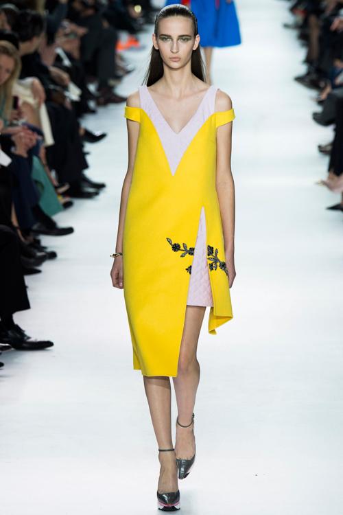 Christian-Dior-RTW-AW14-LOOK-20.jpg