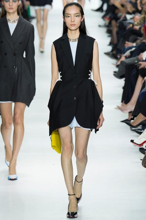 Christian-Dior-RTW-AW14-LOOK-23.jpg