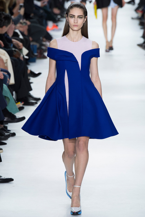 Christian-Dior-RTW-AW14-LOOK-22.jpg