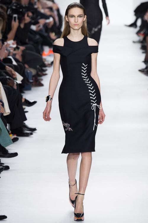 Christian-Dior-RTW-AW14-LOOK-28.jpg