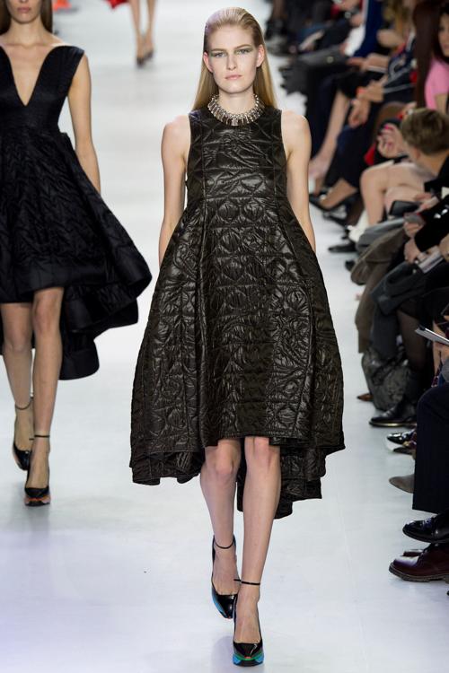 Christian-Dior-RTW-AW14-LOOK-37.jpg
