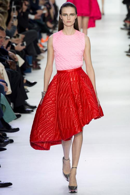 Christian-Dior-RTW-AW14-LOOK-39.jpg
