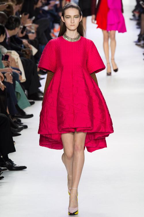 Christian-Dior-RTW-AW14-LOOK-40.jpg