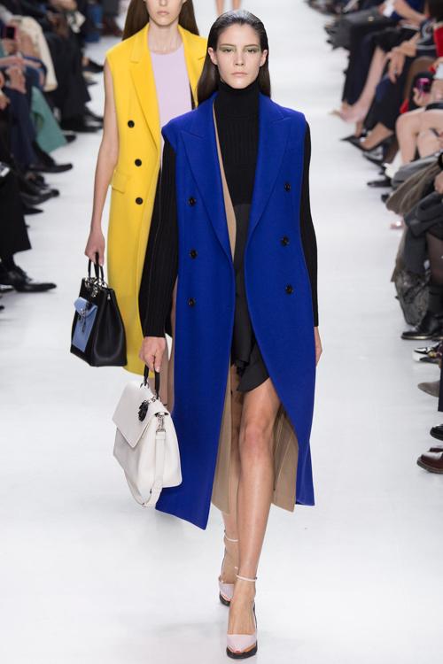 Christian-Dior-RTW-AW14-LOOK-43.jpg