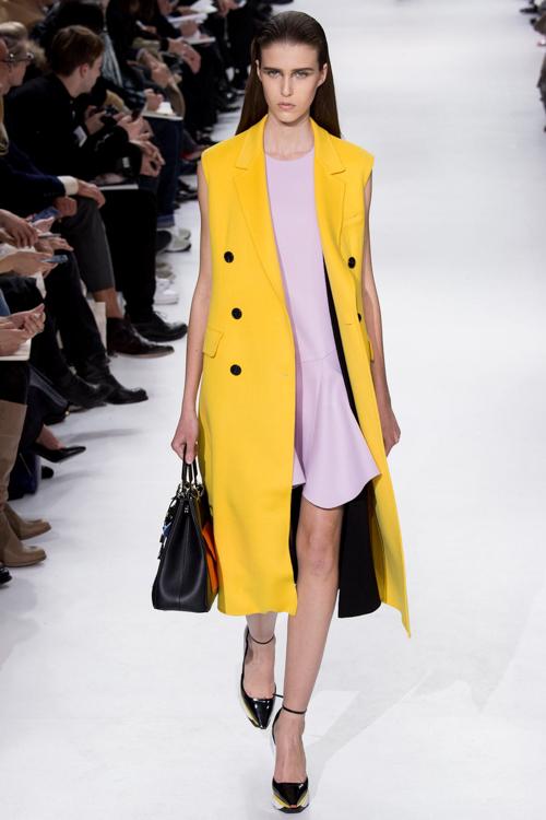Christian-Dior-RTW-AW14-LOOK-44.jpg