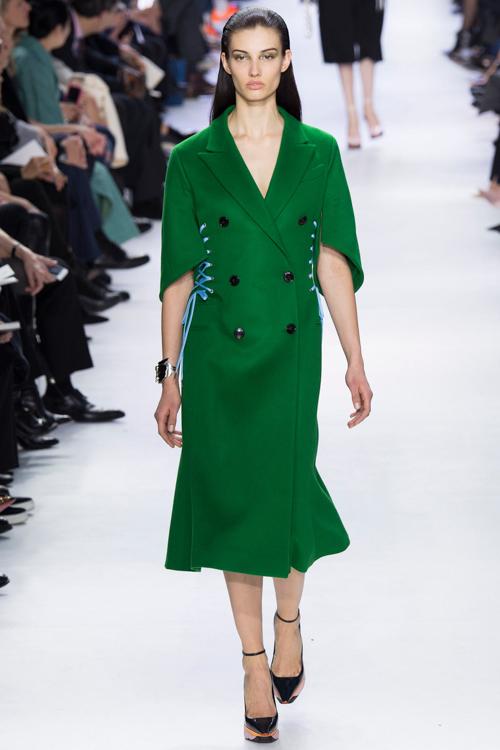 Christian-Dior-RTW-AW14-LOOK-47.jpg