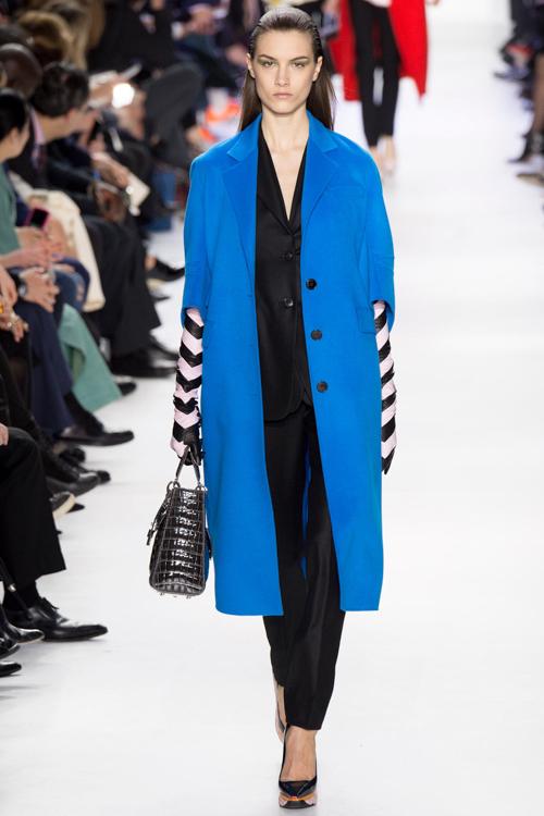 Christian-Dior-RTW-AW14-LOOK-49.jpg
