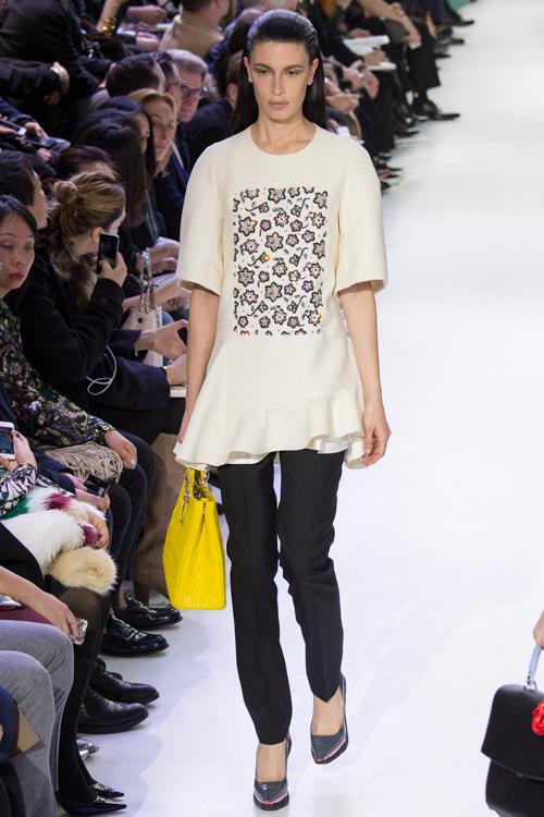 Christian-Dior-RTW-AW14-LOOK-51.jpg