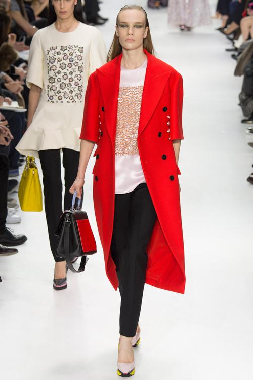 Christian-Dior-RTW-AW14-LOOK-50.jpg