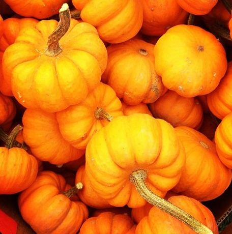 victoria-halloween_4.jpg