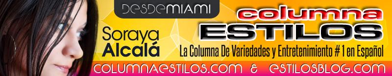 columnaestilos2013.jpg