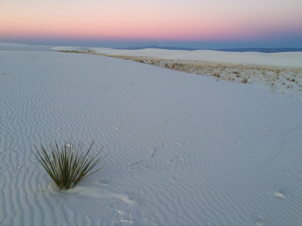 Tularosa, NM - White Sands Desert - photo by Leilani Himmelstein