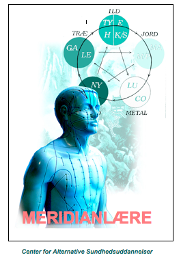 meridianlære kompendie