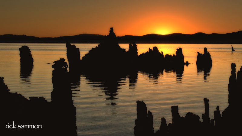 sammon mono lake.jpg