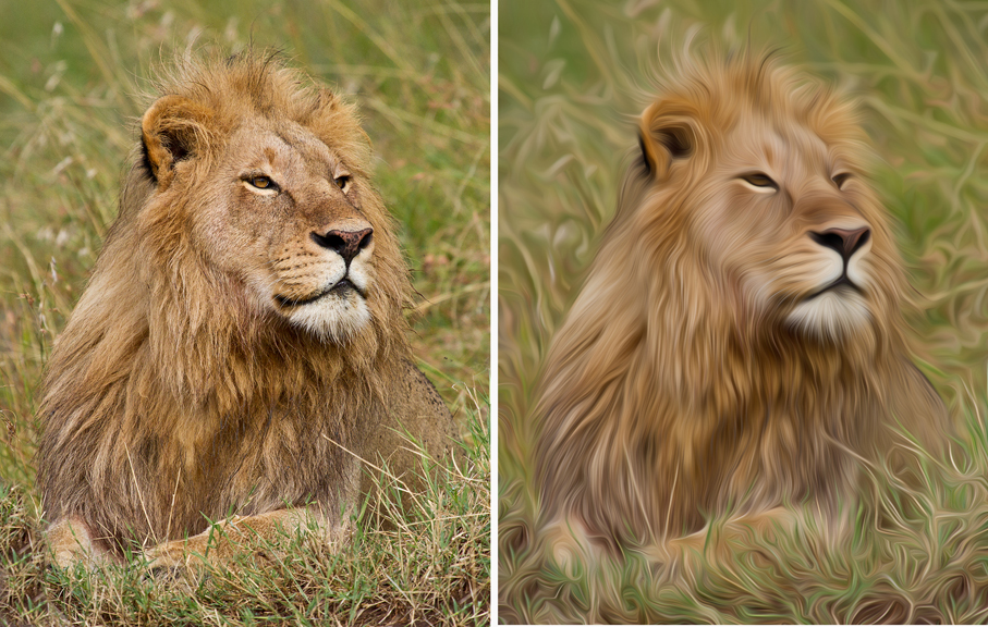 Left, original. Right, Photoshop's Oil Paint filter.