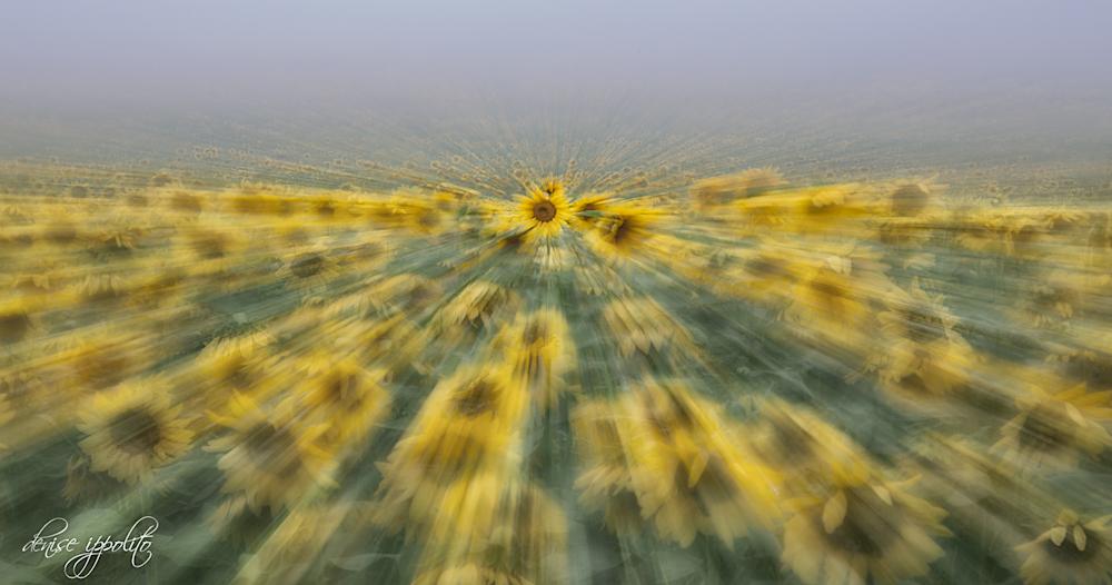 Zoom Blur.jpg
