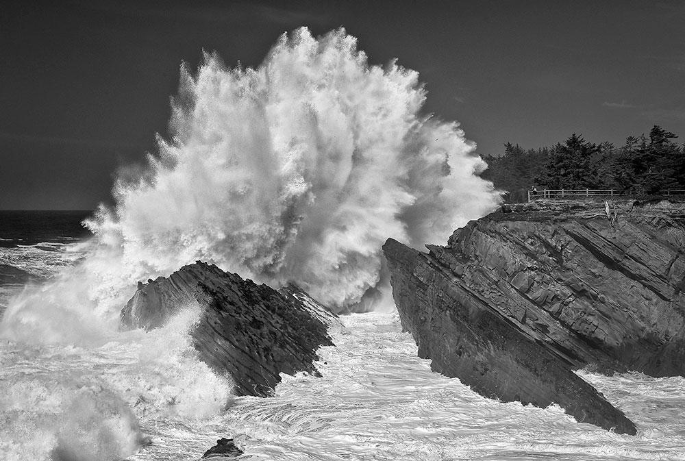 Alex_Morley_Shore_Acres_Wave_B&W.jpg