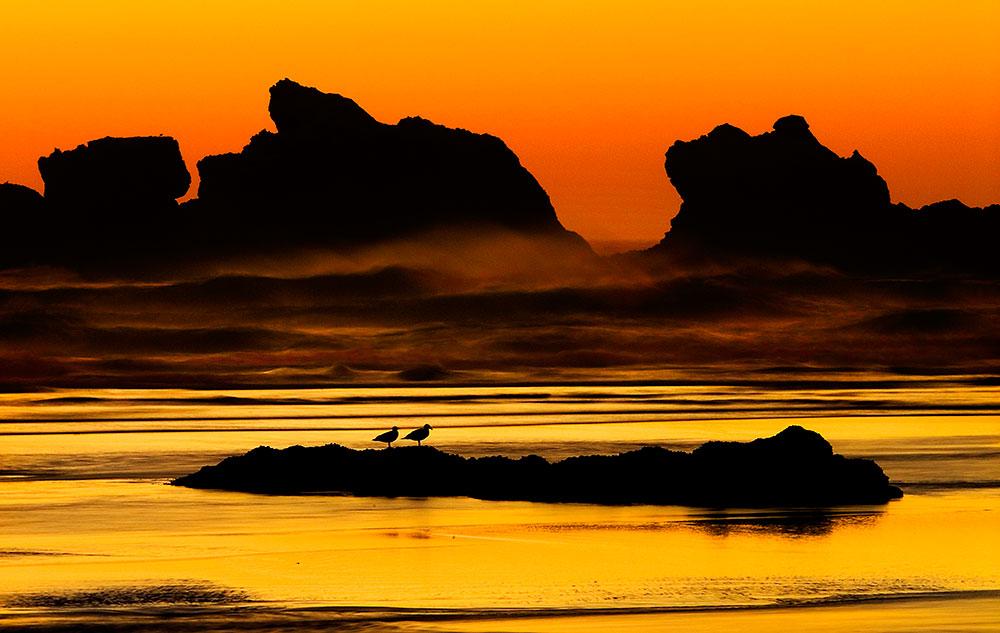 Alex_Morley_Bandon_Sunset_Orange_Gulls.jpg