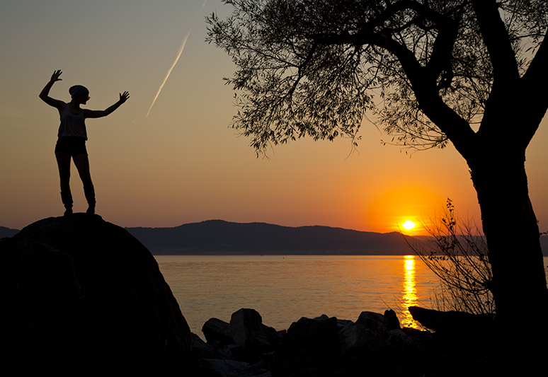 Sunset silhouette, Croton-on-Hudson, NY - Rick's Backyard.