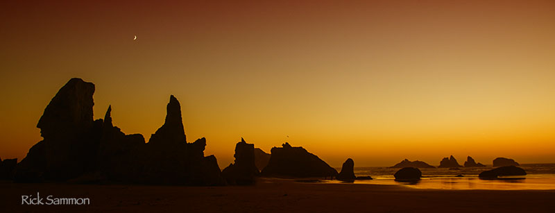 sammon sunset copy.jpg