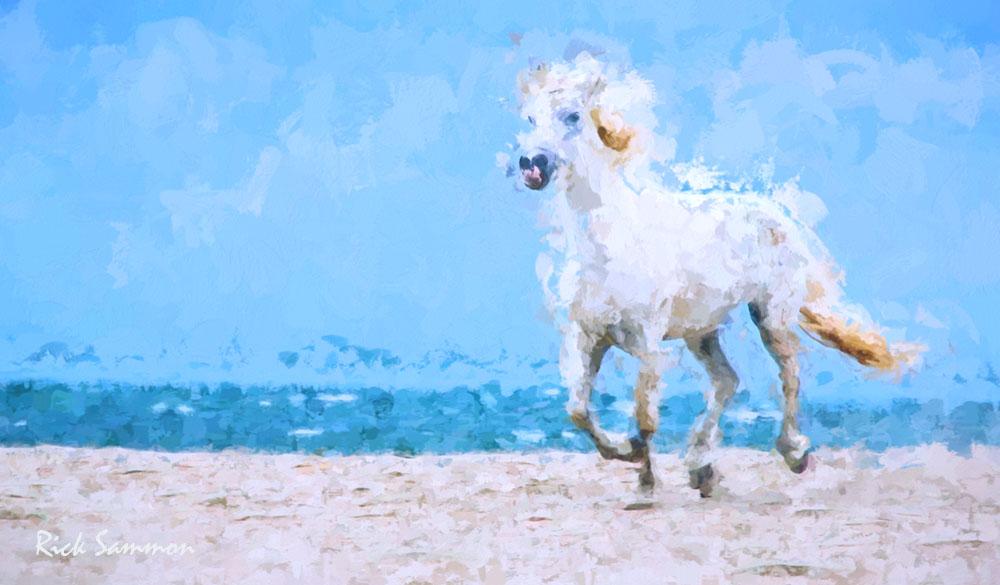 Monet Effect.