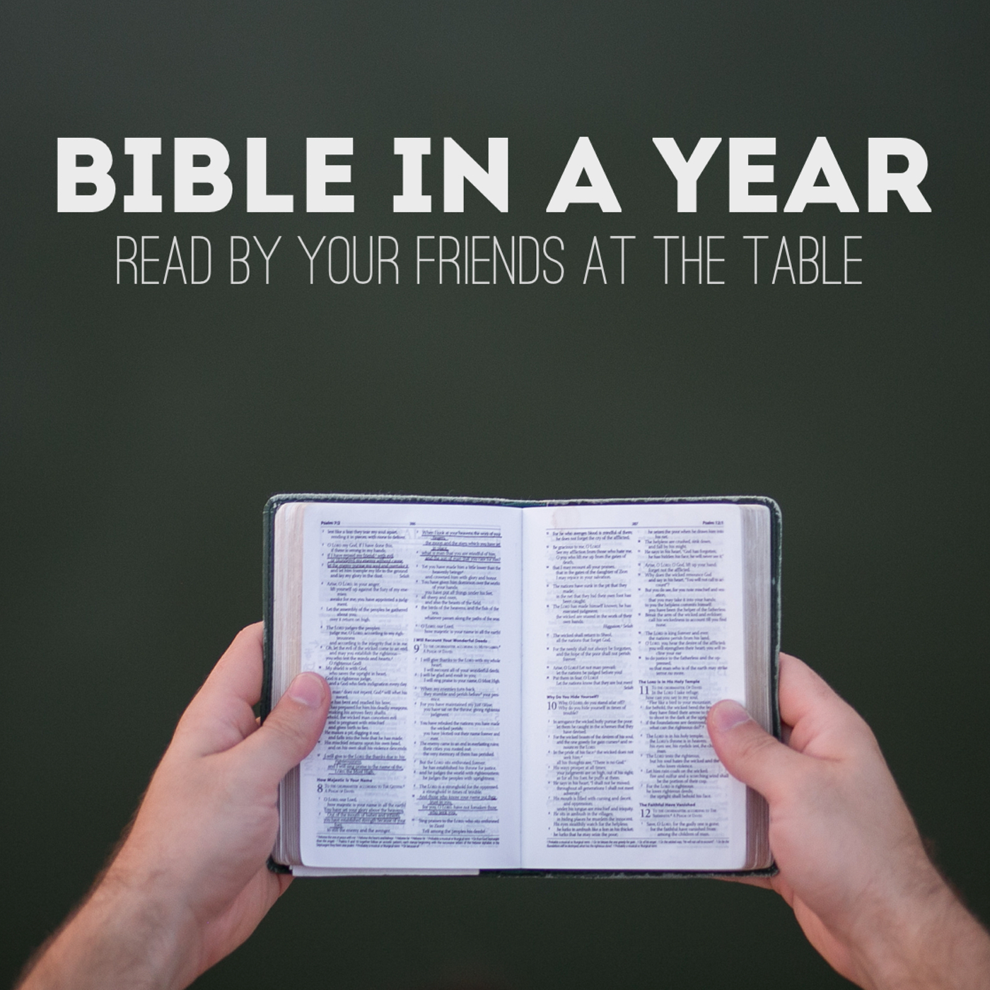 Bible in a Year - the table.