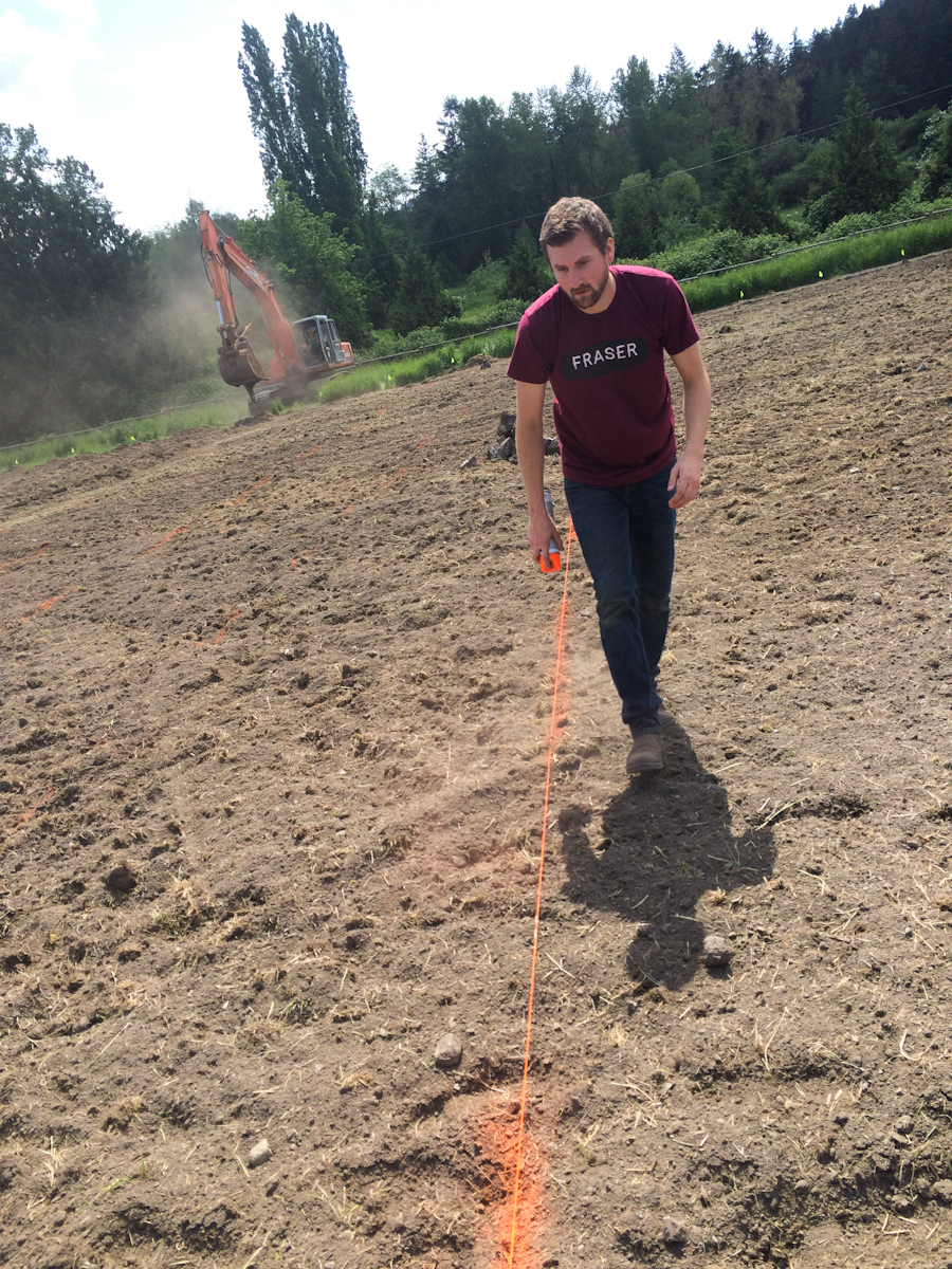 Marking out the row's