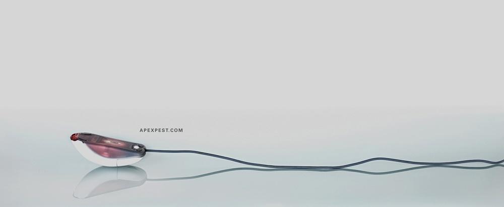 1 Apex-Dead Mouse2.jpg