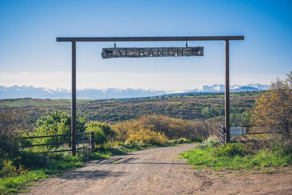 T Ranch Montrose Colorado-47-2-HDR-4K.jpg