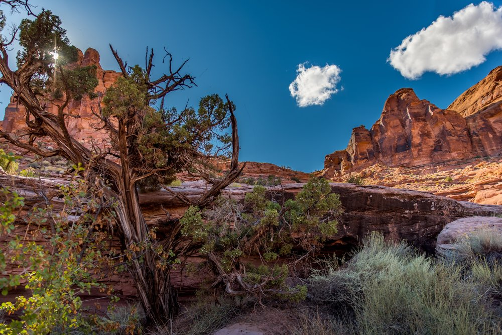 ROAM EXPEDITION 2015-897-5-HDR.jpg