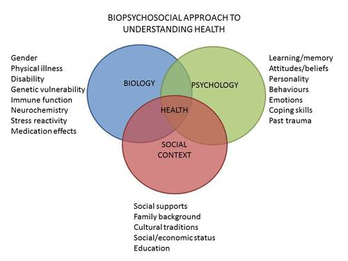 Health psychology perspectives clinic biopsychosocial modelnbspof ccuart Gallery