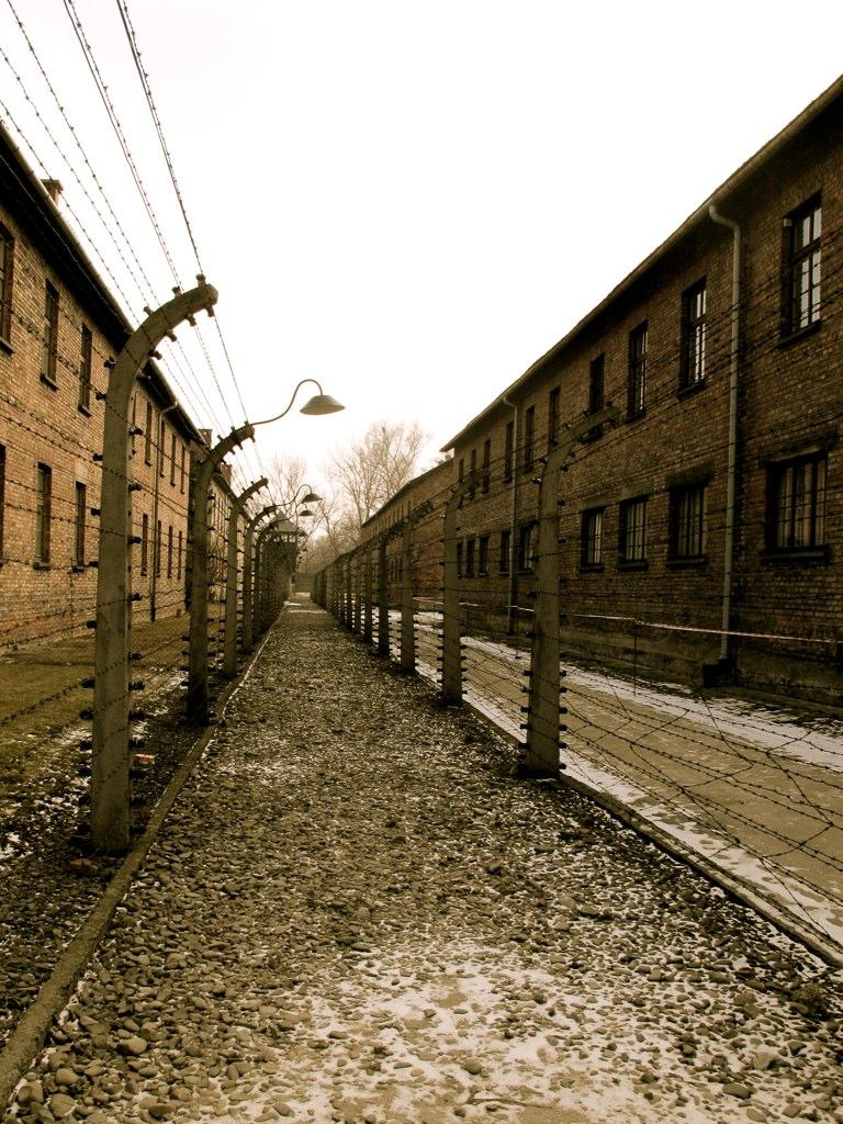 Auschwitz fence.jpg