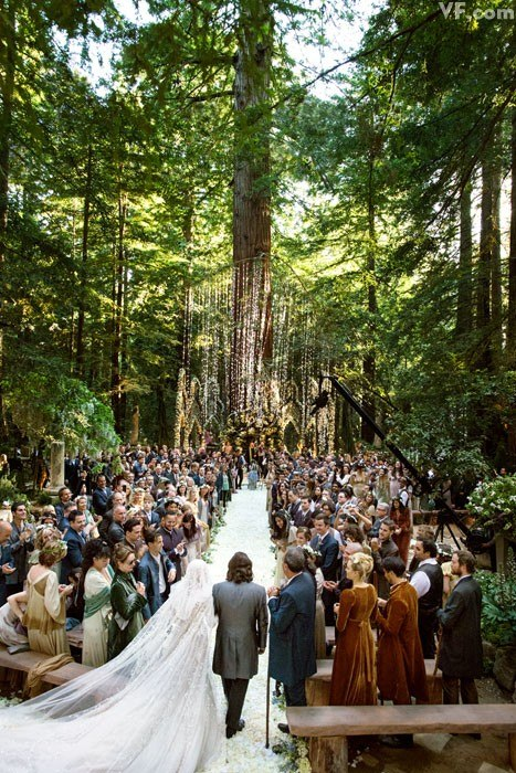 photos-sean-parker-wedding.sw.5.sean-alexandra-parker-wedding-ss01.jpg