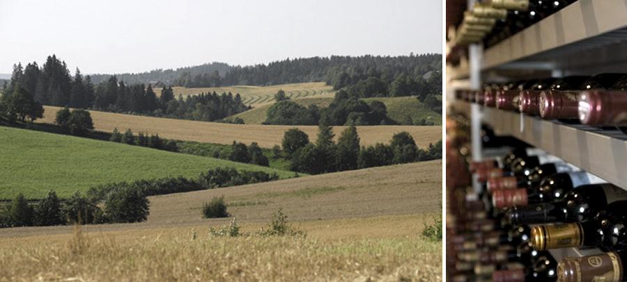 Coll3_vin_landskap.jpg