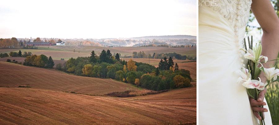 COLLAGE_landskap_brud.jpg