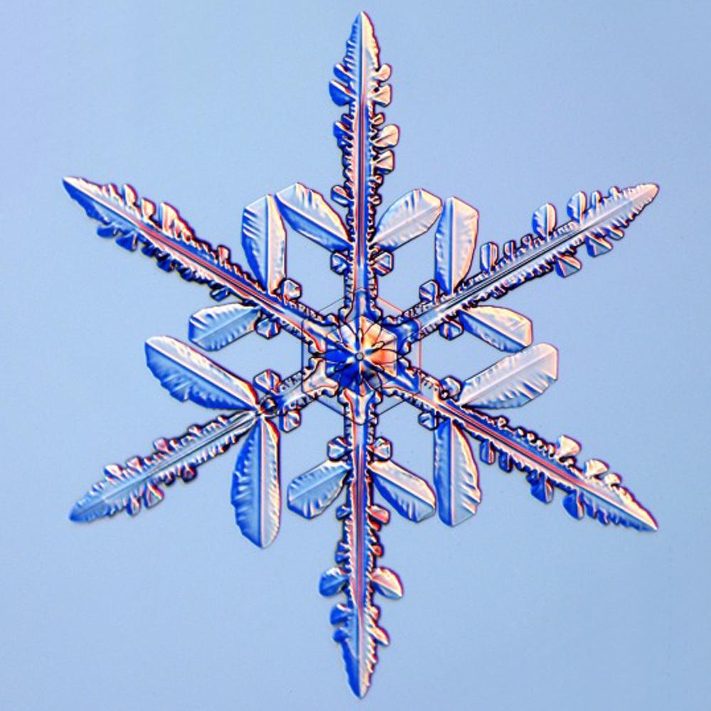 snowflake-4.jpg