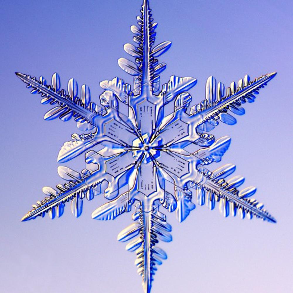 snowflake-6.jpg