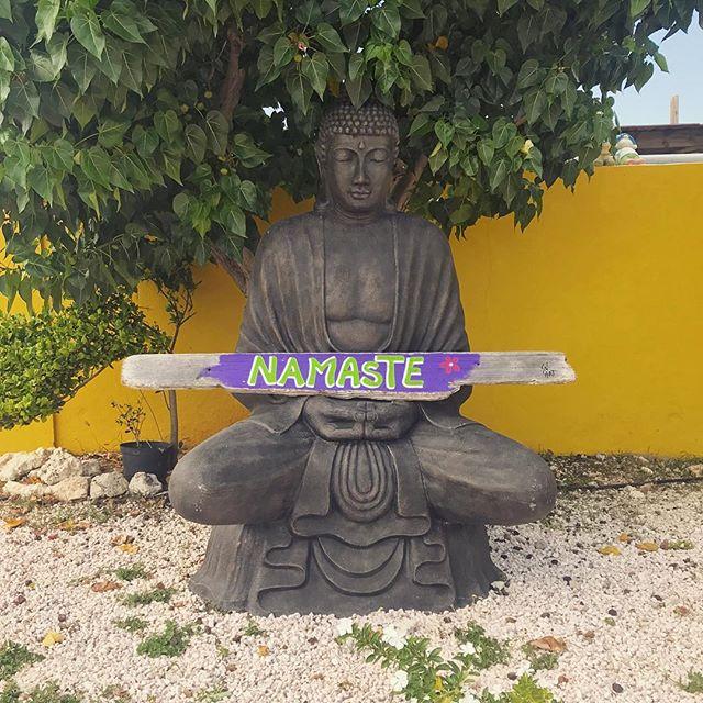 namaste in bonaire for the rest of winter 🙏🏼❄️☀️ #downdog #yoga #namaste