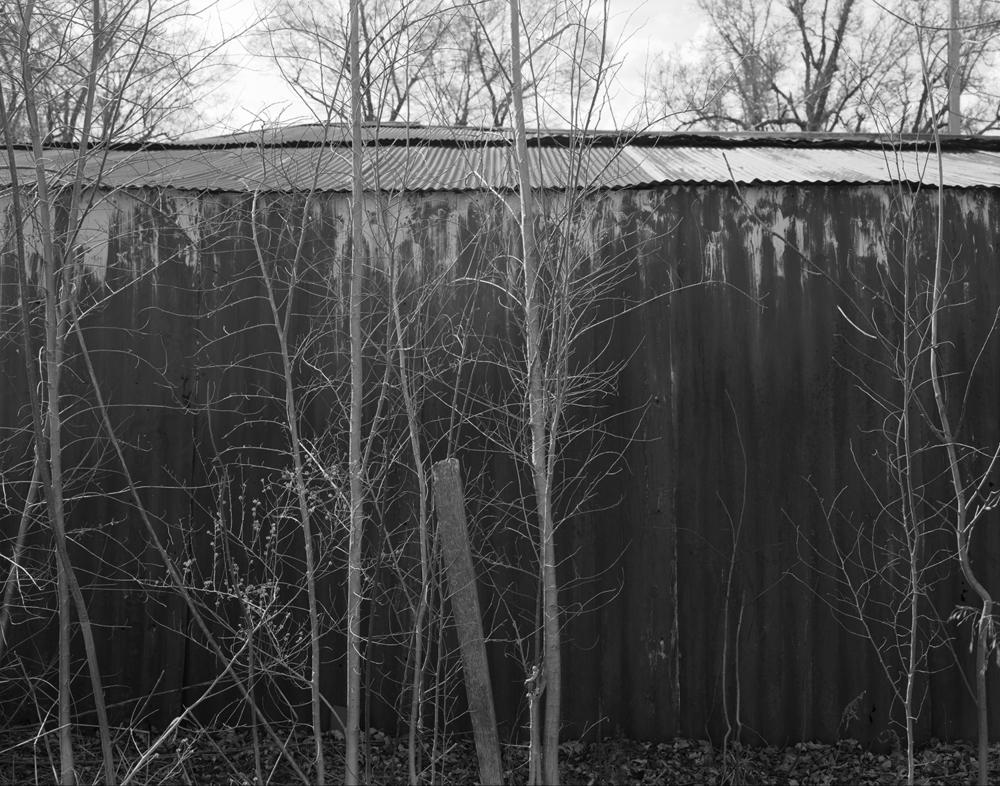 barn and trees.jpg