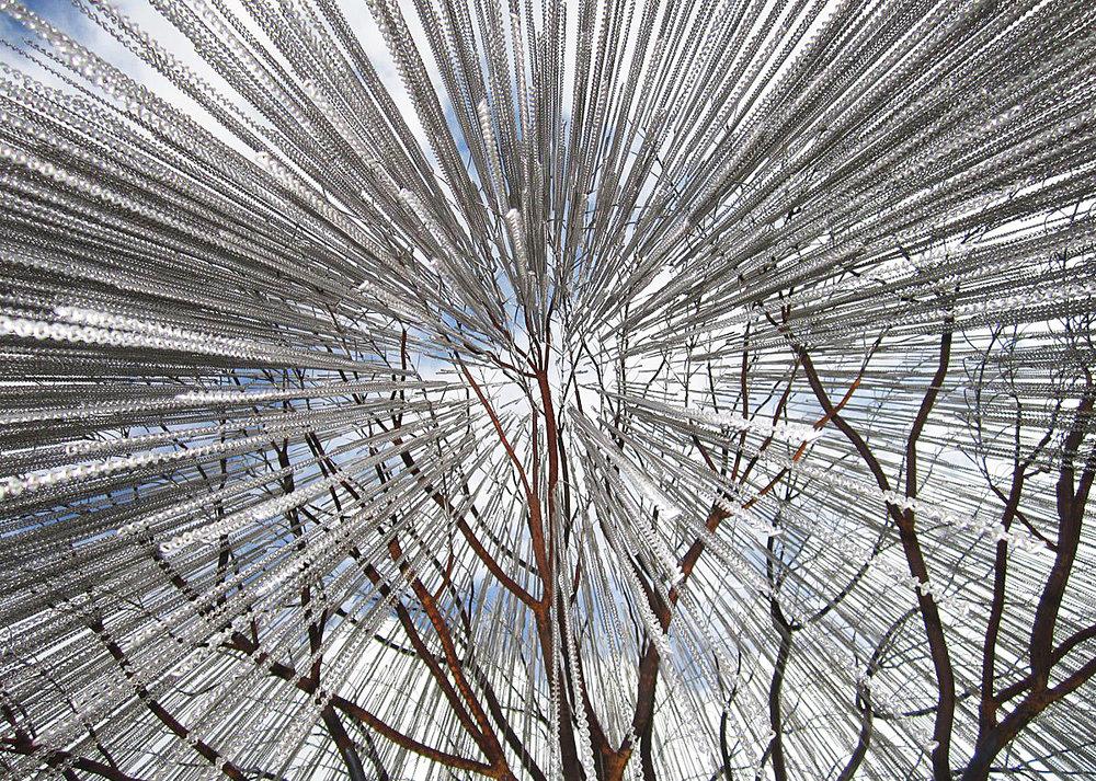 under willow1.jpg
