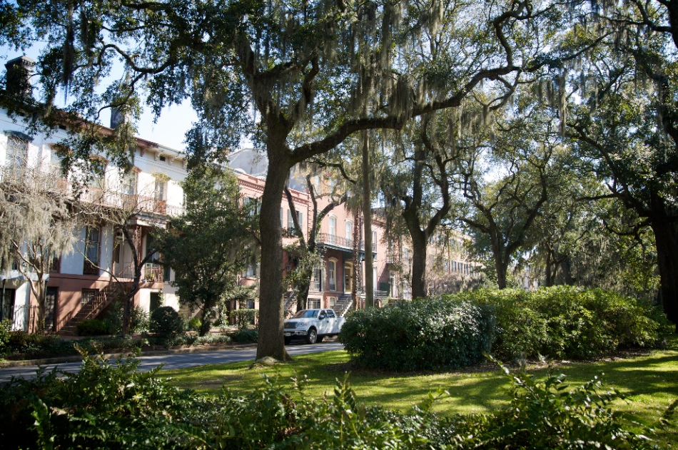Here are some of the beautiful Savannah homes with the old live oaks.
