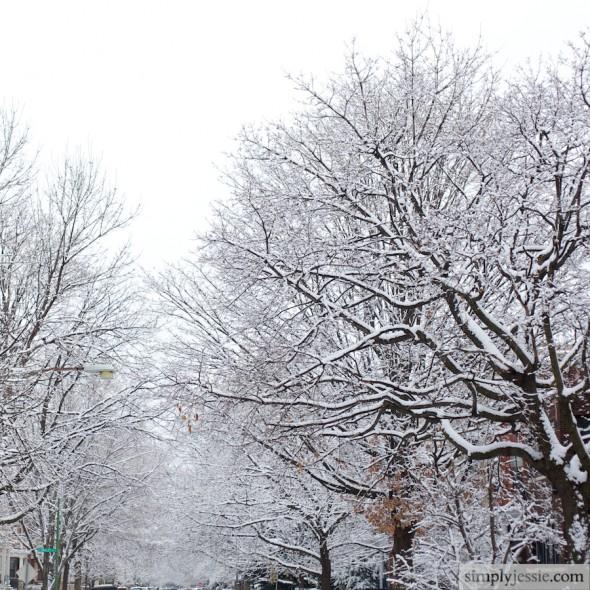 2010 Winter 2011 IMG_9828 - Version 2 (2)