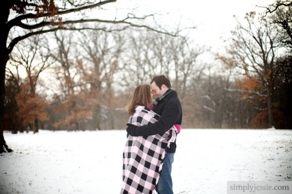 Winter Morton Arboretum Engagement Photography