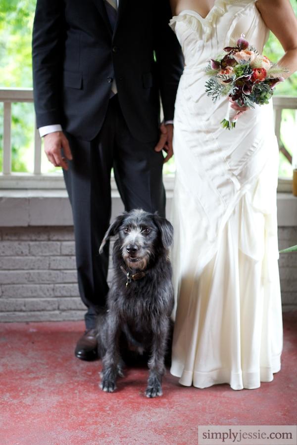 Bride&GroomwithDog