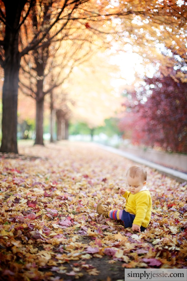 Baby Fall Photography