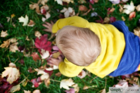 Baby crawling in Fall Leaves