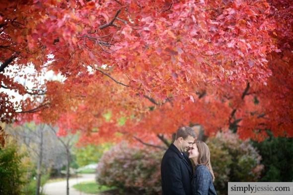 Engagement Photography at Chicacgo Botanic Garden